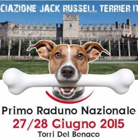 Dog festival in Torri: Jack Russell but not only!